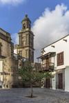 Vista de una de las torres de la Catedral de Las Palmas vista desde la plaza de Los Álamos del barrio de Vegueta cubriendo un reportaje de fotografía de arquitectura del mismo.