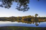 Sereno amanecer sobre las tranquilas aguas de la presa de las Niñas donde se refleja el pino de Casandra para un reportaje de fotografía de paisajes de Gran Canaria